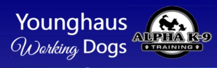 Younghaus Working Dogs - Alpha K-9 Training